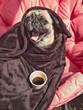 Guten Morgen - erst mal Kaffee - 167068912