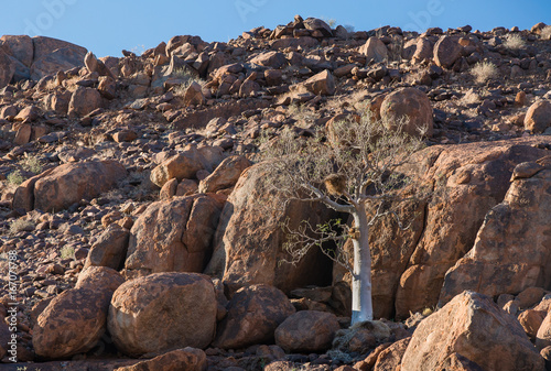 Strange volcanic rock pile formations in the NamibRand Reserve area
