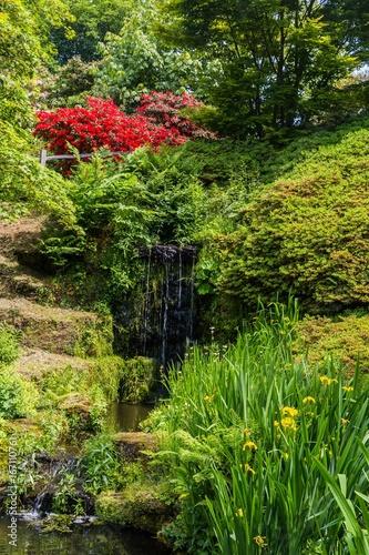 Fotobehang Azalea Colorful British castle garden during spring in Sussex, England