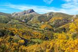 Mountain Palentina. Spain