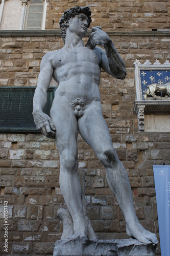 The statue of David by Michelangelo on the Piazza della Signoria in Florence, It Poster