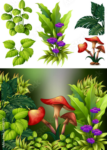 Fotobehang Lime groen Background scene with mushroom and flowers