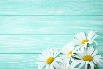 Chamomile flowers on mint wooden table