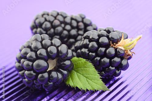 Blackberry fruit on purple foil