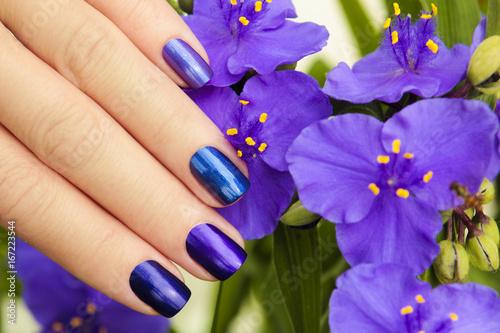 Разноцветный синий маникюр.