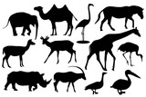 Wild animals and birds. Black silhouette icons