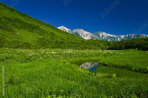 Staande foto Nachtblauw 池と山と緑の湿原