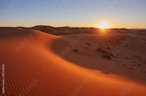 Foto op Canvas Marokko Beautiful sand dunes in the Sahara