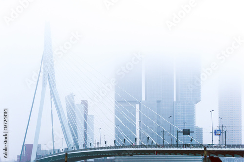 Foto op Canvas Rotterdam Erasmus bridge of Rotterdam City Netherlands