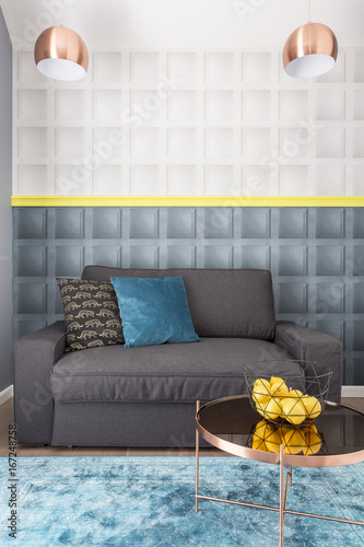 Gray couch in elegant style