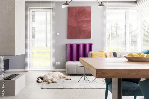 Light beige contemporary living room