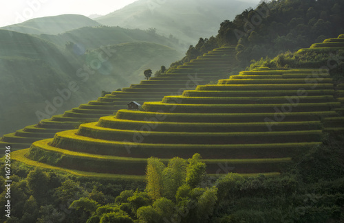 Aluminium Rijstvelden Terraced rice field landscape of Mu Cang Chai, Yenbai, Northern Vietnam