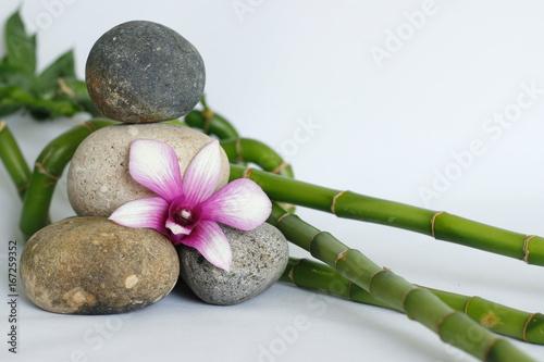 galets gris naturel disposés en mode de vie zen avec une orchidée bicolore, sur le coté droit des bambou torsadés sur fond blanc