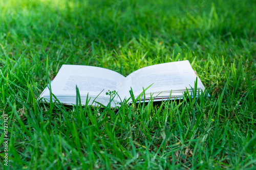 Open book lying on green grass sunlight flecks,summer, spring, authentic style, education, reading, learning concept, relaxation, environment, school, college