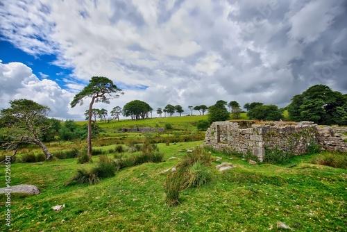 Foto op Aluminium Bleke violet Old Tin Mine, old ruined granite buildings set on Dartmoor.. Dartmoor National Park is vast moorland in the county of Devon, England UK.
