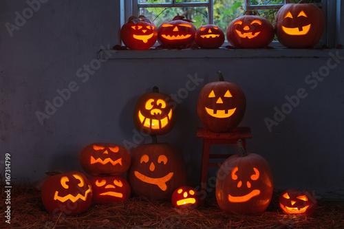 halloween pumpkins indoor Poster