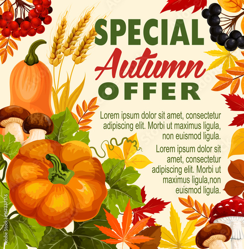 Autumn sale, fall season special offer poster