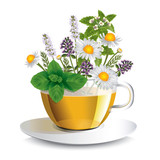 Herbal tea in a transparent cup with aromatic herbs, a conceptual idea for the label - 167339128