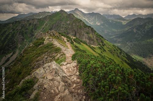 Foto op Aluminium Bleke violet Tatry, Zakopane, Mountains, Poland