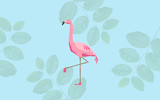 pink flamingo bird over blue background - 167379510