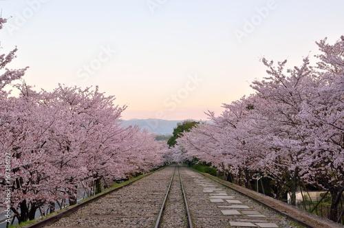 Fotobehang Kyoto 京都 蹴上インクライン