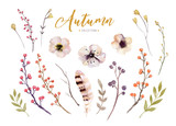 Set of red and yellow autumn watercolor leaves and berries, flowers hand drawn design foliage elements decoration. - 167400901