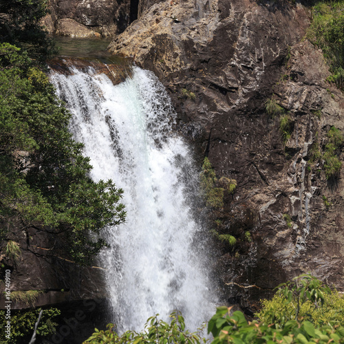 Foto op Aluminium Betoverde Bos Waterfall in moss forest in Yakushima Island Japan