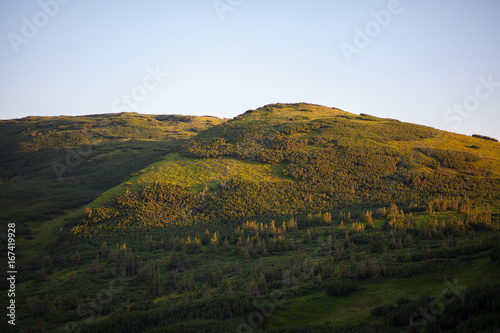 Nature in Carpathian Mountains at sunset.