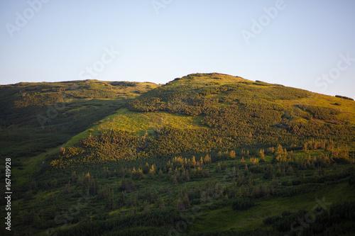 Foto op Canvas Zwart Nature in Carpathian Mountains at sunset.