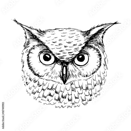 Foto op Aluminium Uilen cartoon Vector sketch of owl head ballpoint pen