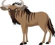 Cartoon wildebeest isolated on white background - 167524376