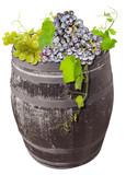 raisin et vigne sur tonneau