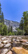 Stream in Yosemite with rocky shallows. Water ways in Yosemite with the forest surrounding