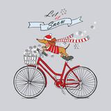 Jamnik w koszulce, szaliku i czapce Mikołaja jadący na rowerze.