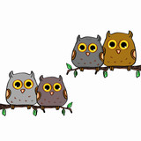 Cute owls sitting in a tree and white background