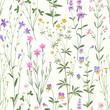meadow flower pattern on white  background