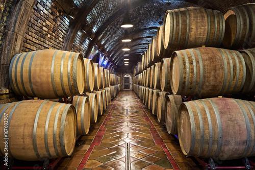 Fototapeta Wine cellar with of oak barrels
