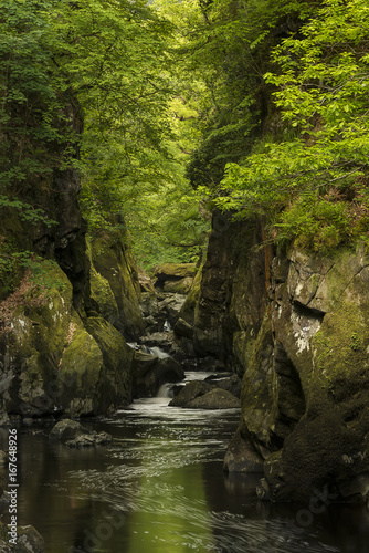 Stunning ethereal landscape of deep sided gorge with rock walls and stream flowing through lush greenery