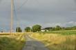 Petite route secondaire de campagne entre Champagne et Puy de Versac sous la lumière du coucher de soleil ,au Périgord Vert