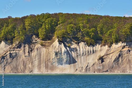 Fotobehang Natuur Park White cliffs near Sassnitz on Rügen island in East Germany