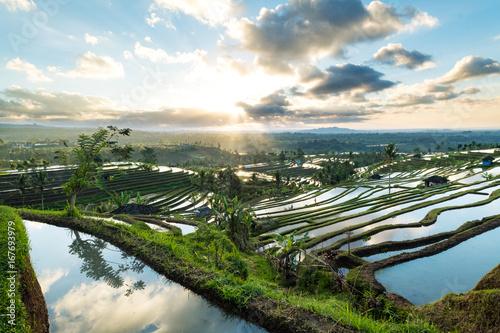 Papiers peints Bali Beautiful sunrise over the Jatiluwih Rice Terraces in Bali, Indonesia.