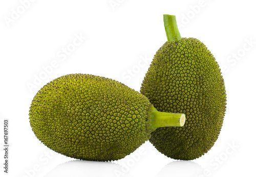 Jackfruit isolated on white background - 167697503