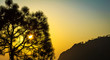 Beautiful Evening view of tree from Vaishno Devi Jammu India