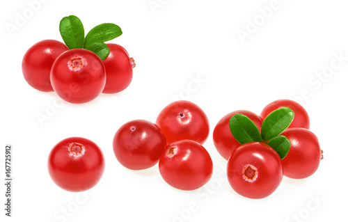 Poster Cranberries isolated on white background