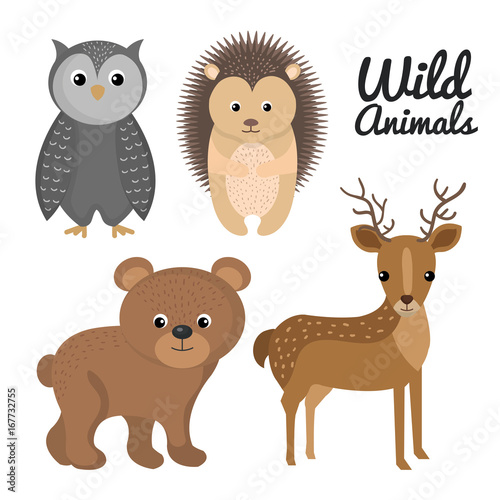 Keuken foto achterwand Uilen cartoon cute wild animal nature fauna set image vector illustration