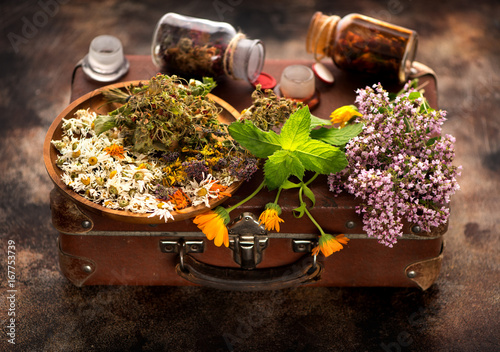 Healing Medical herbs and flowers