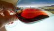 Quadro composition vignes dans verre de vin
