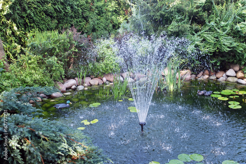 oczko wodne z fontanną