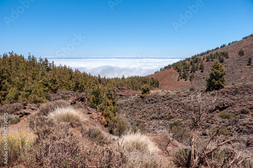 Foto op Canvas Cappuccino Above the clouds 2 Tenerife