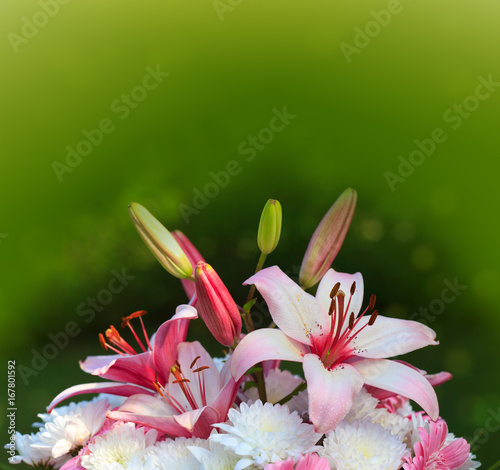 Colorful lily bouquet isolated.